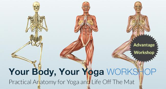 Your Body Your Yoga Workshop With Chris Dunphy Kushala Yoga And