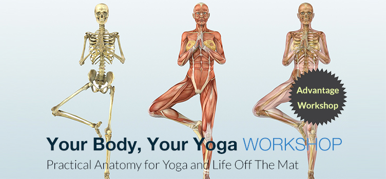 Your Body, Your Yoga Workshop with Chris Dunphy – Kushala Yoga and ...